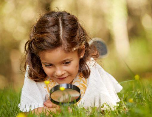 ecologia na educação infantil